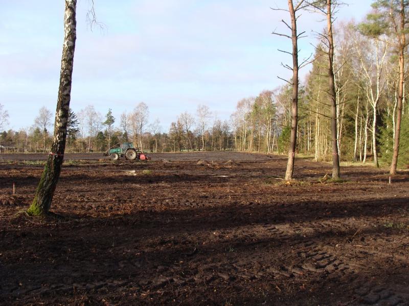Området set mod vest med rodfræseren i arbejde